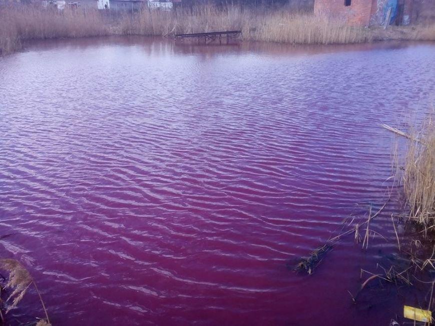 В Черниговской области появилось розовое озеро, фото-3