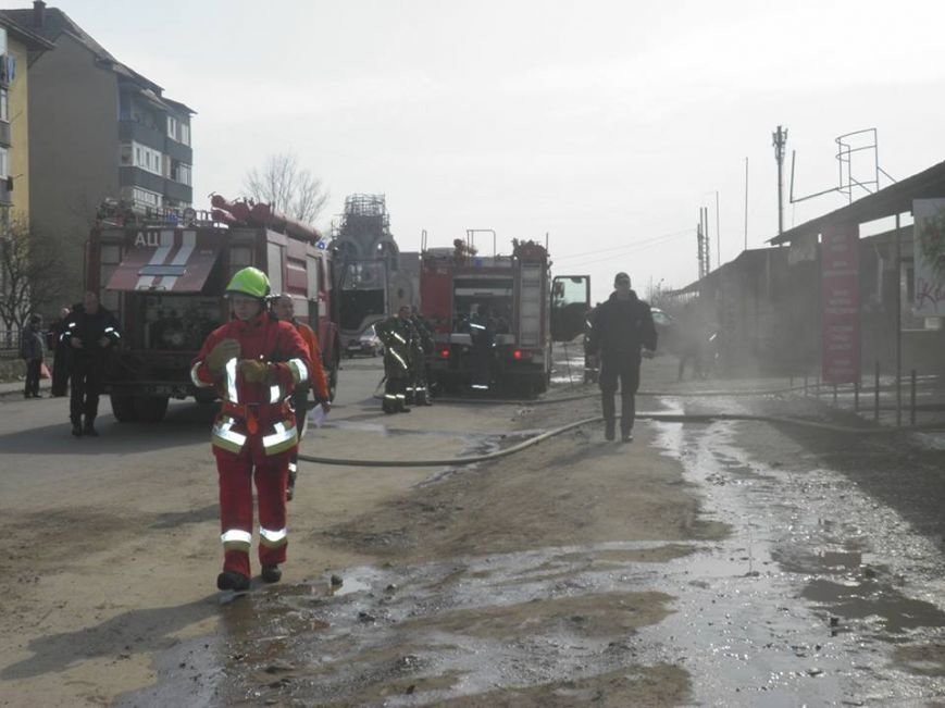 """В Ужгороді загорівся """"Свинський базар"""": відео, фото-1"""