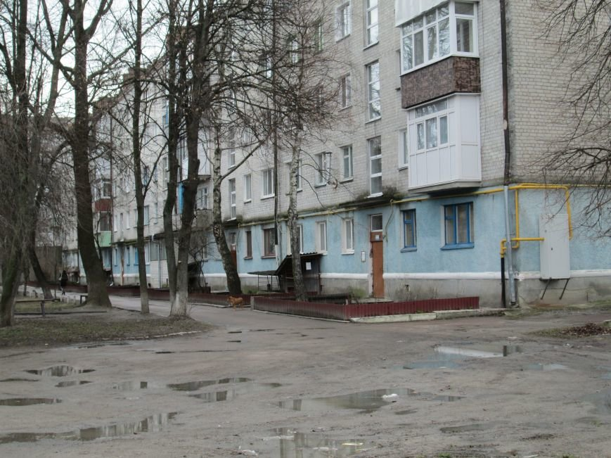 Небезпека поряд: У житловому кварталі Новограда-Волинського виявили снаряд (ФОТО, ВІДЕО), фото-3