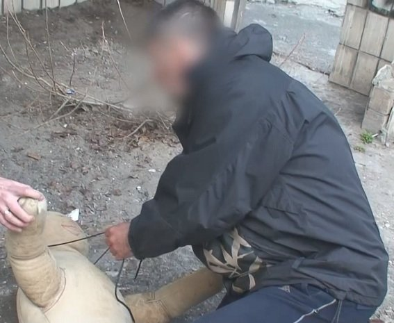 В Киеве задержали убийцу преподавателя, фото-1