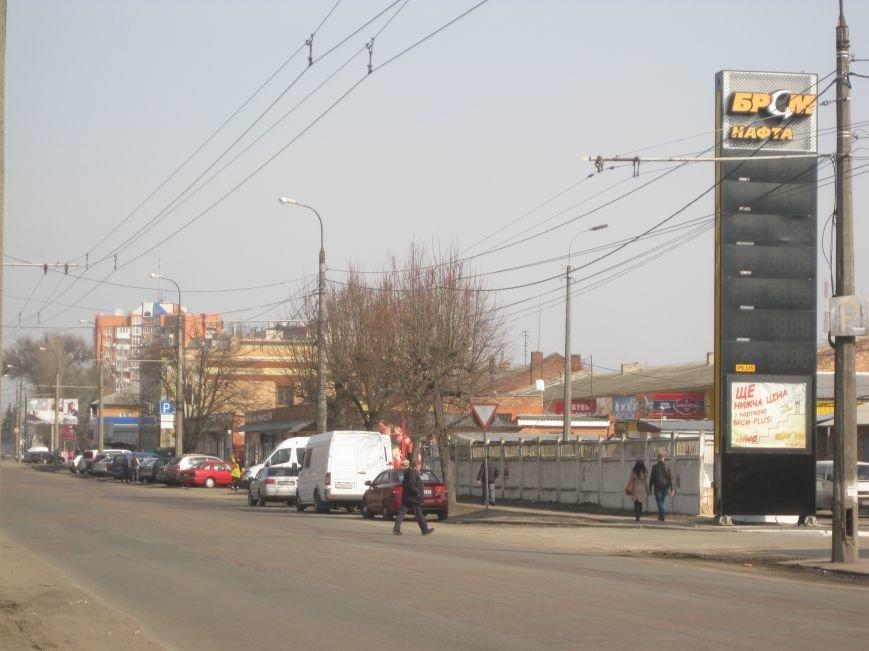 Зачем так с каштанами в Чернигове?!, фото-3