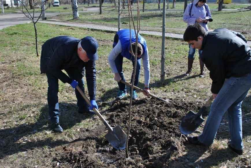 Павлоградцы наводят порядок на улицах и в парках, фото-1