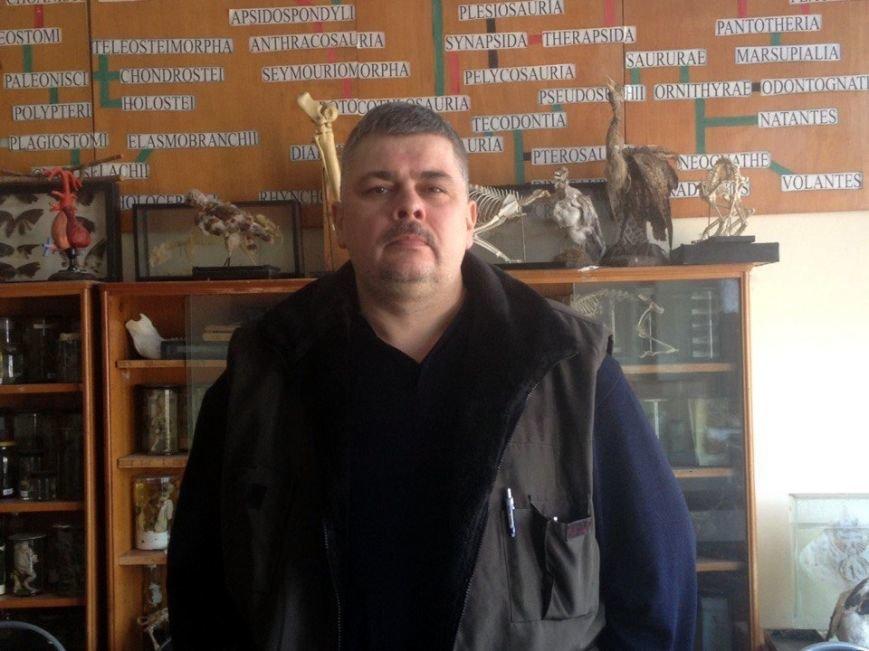 Как спасти Днепр от атаки чаек (ФОТО), фото-1