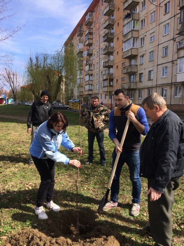 Як Андріїв із місцевими депутатами Ужгород прибирали: фото, фото-6