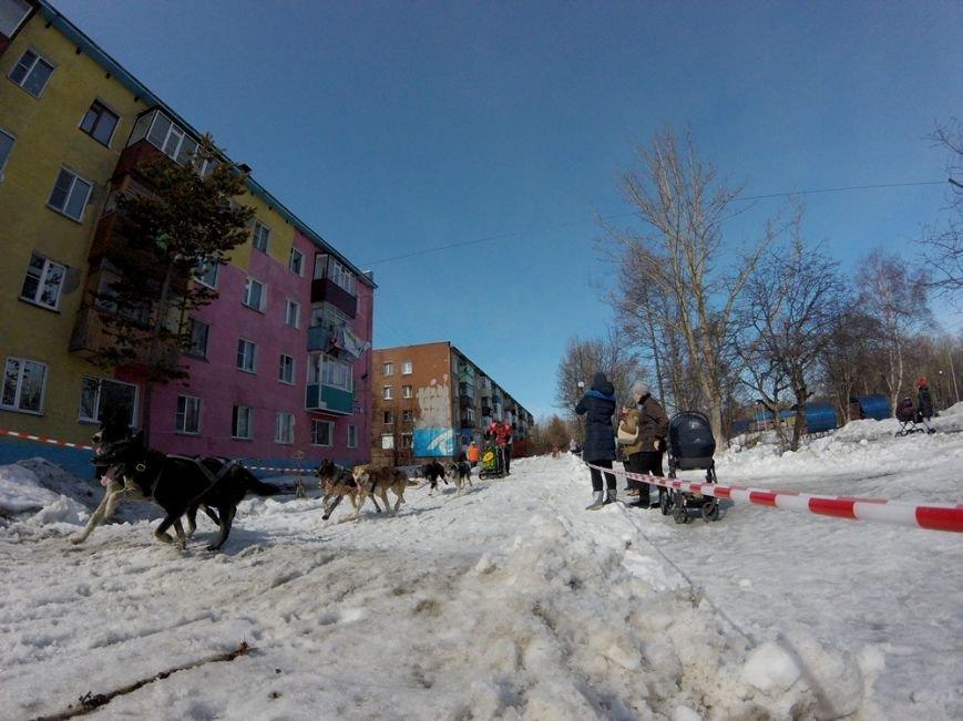 На Камчатке победителем «Елизовского спринта-2017» стал Никита Ревенок, фото-8