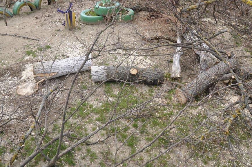 В Херсоні продовжують пиляти дерева (фото), фото-1