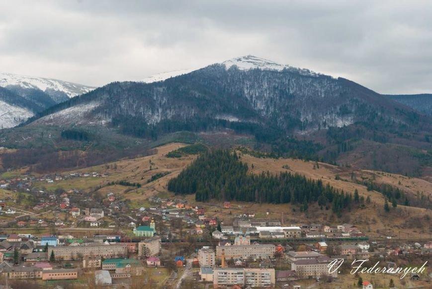 Приклад нещадної вирубки дерев - лиса гора Темнатик у Воловецькому районі: фото, фото-1