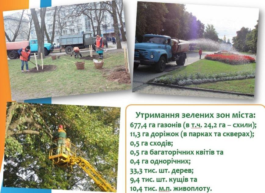 В прошлом году Чернигов озеленили почти на 20 миллионов, фото-4
