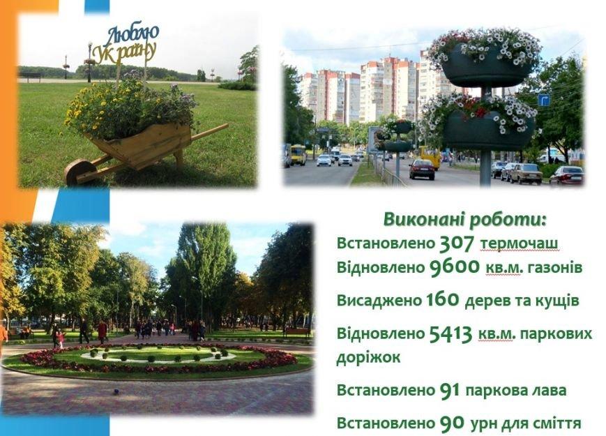 В прошлом году Чернигов озеленили почти на 20 миллионов, фото-3