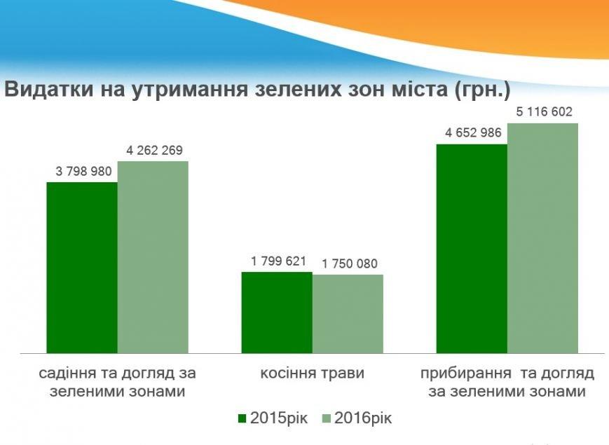 В прошлом году Чернигов озеленили почти на 20 миллионов, фото-1