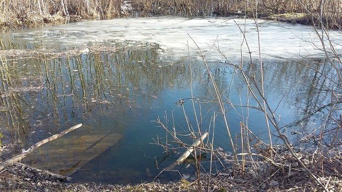 В Шумилинском районе мальчик провалился под лед на водоеме и умер. ФОТО, фото-1