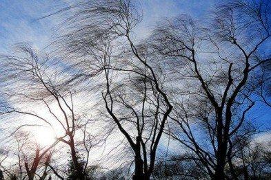 На Полтавщине без света осталась почти сотня населенных пунктов, фото-1