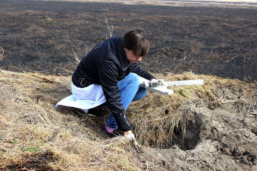 В Ростовской области диких животных «накормили» вакциной от  бешенства, фото-1