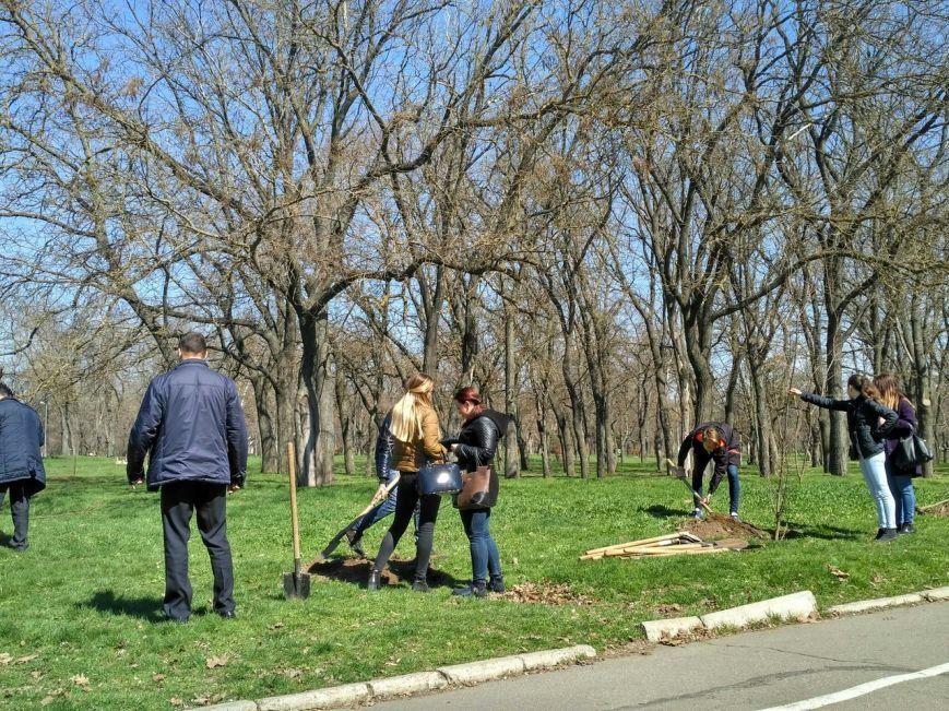 Херсонские студенты-журналисты присоединились к акции «Посади дерево мира» (фото), фото-2