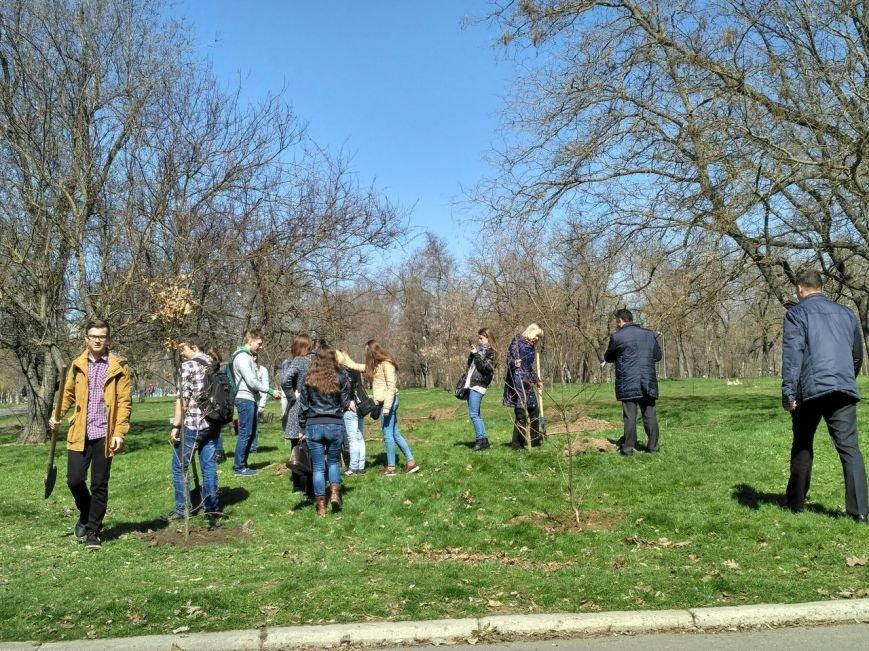 Херсонские студенты-журналисты присоединились к акции «Посади дерево мира» (фото), фото-1