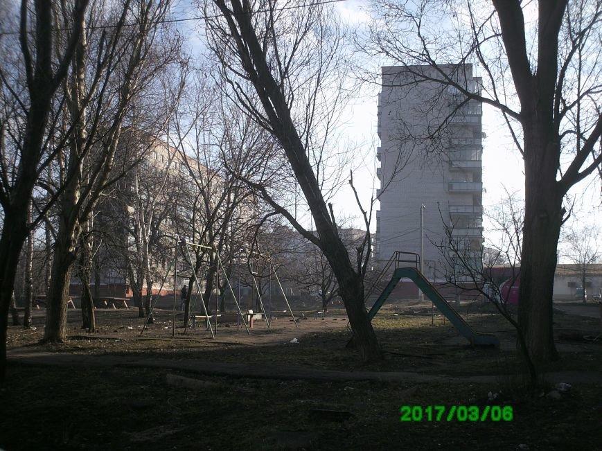 В Краматорске дерево угрожает жизни детей, фото-1