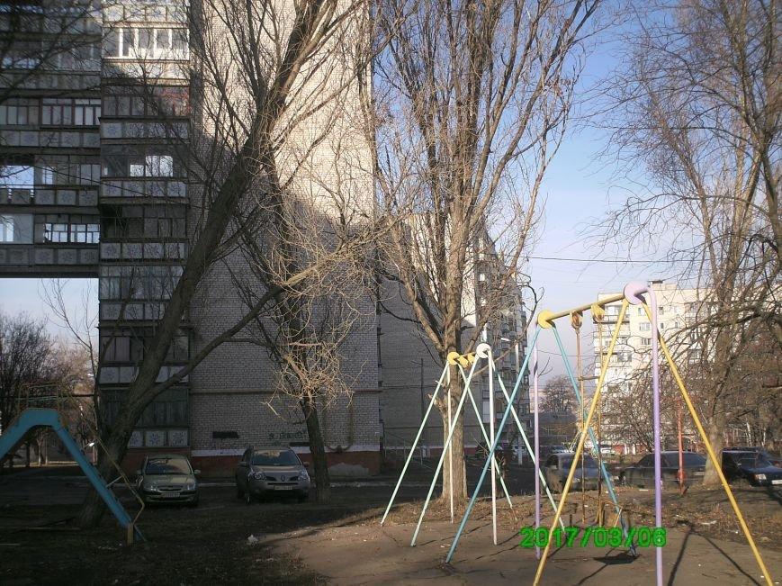 В Краматорске дерево угрожает жизни детей, фото-2