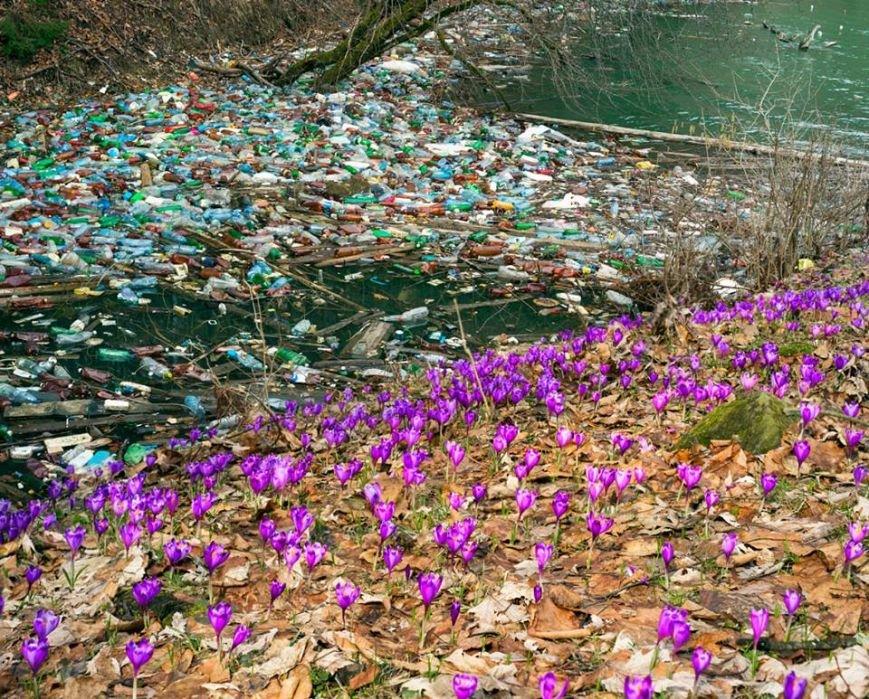 Краса і сміття: у соцмережі фотограф опублікував фото Закарпаття, яке завалене відходами, фото-1