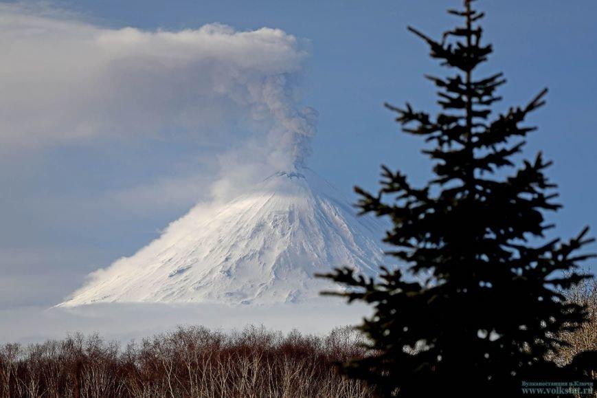 На Камчатке Ключевской «стреляет» пеплом четвертый день подряд, фото-1
