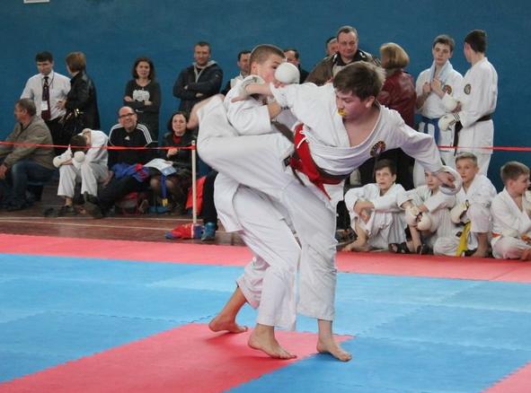 Бахмутчане заняли первое общекомандное место в Чемпионате области по каратэ JKS, фото-1