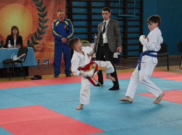 Бахмутчане заняли первое общекомандное место в Чемпионате области по каратэ JKS, фото-2