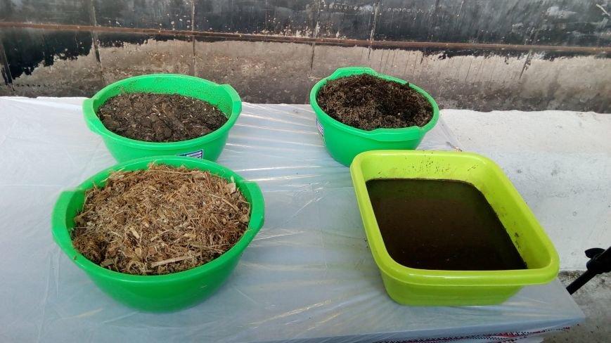 Как В Днепропетровской области из отходов птицефабрики производят теплоэнергию, фото-3