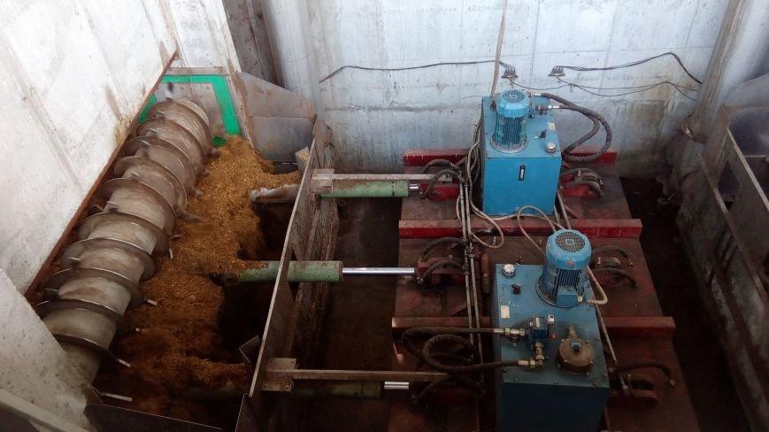 Как В Днепропетровской области из отходов птицефабрики производят теплоэнергию, фото-2