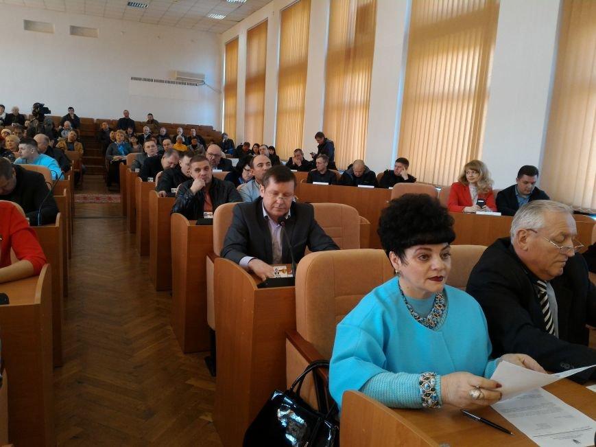 Каменские депутаты спорили о зеленых зонах, фото-2