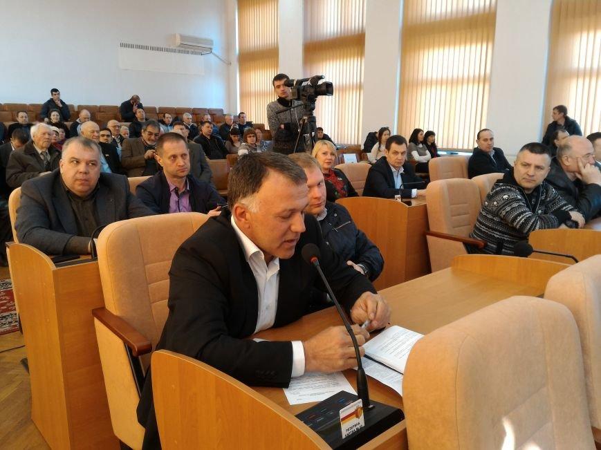 Каменские депутаты спорили о зеленых зонах, фото-3