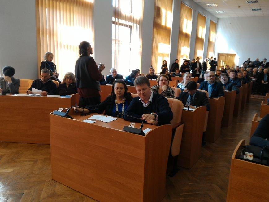 Каменские депутаты спорили о зеленых зонах, фото-1