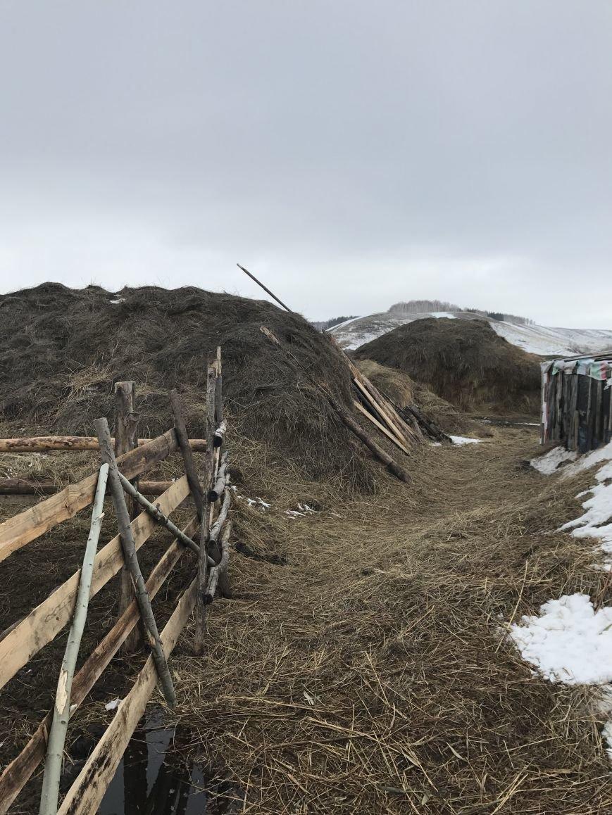 Саратовскую область традиционно считают сельскохозяйственным регионом., фото-1