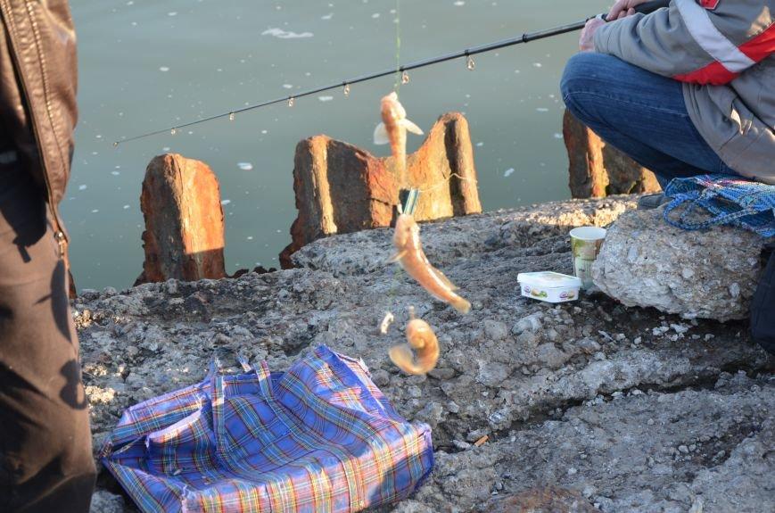 Рыбка клюет! Сотни мариупольцев объявили «охоту» на бычка (ФОТО+ВИДЕО), фото-14