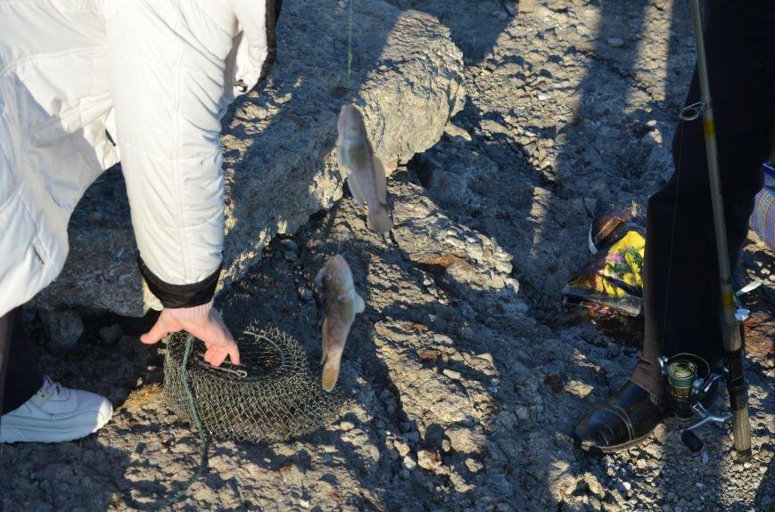 Рыбка клюет! Сотни мариупольцев объявили «охоту» на бычка (ФОТО+ВИДЕО), фото-2