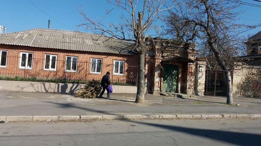 Херсонец в апреле выбросил новогоднюю елку (фото), фото-1