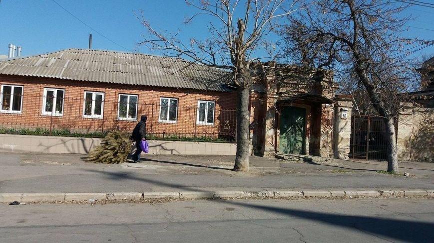 Херсонец в апреле выбросил новогоднюю елку (фото), фото-2