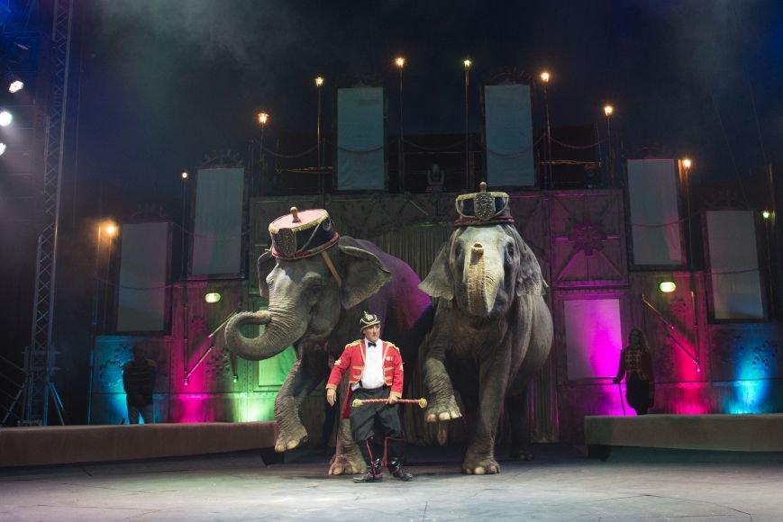 Артисты Цирка КОБЗОВ выступят с Шоу «Цирк Италии», фото-1