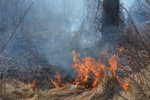 На Закарпатті через пожежу 10 населених пунктів залишились без газу - ДСНС, фото-1