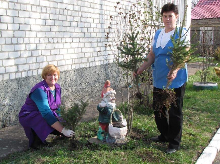 У Новоград-Волинському ДНЗ №2 «Калинка» розпочали весняне прибирання території, фото-1