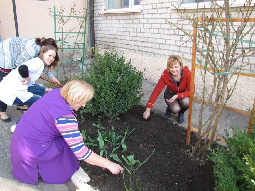 У Новоград-Волинському ДНЗ №2 «Калинка» розпочали весняне прибирання території, фото-3