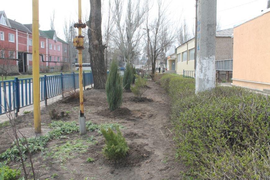 С приходом весны Бахмут стал еще зеленее (ФОТО), фото-5