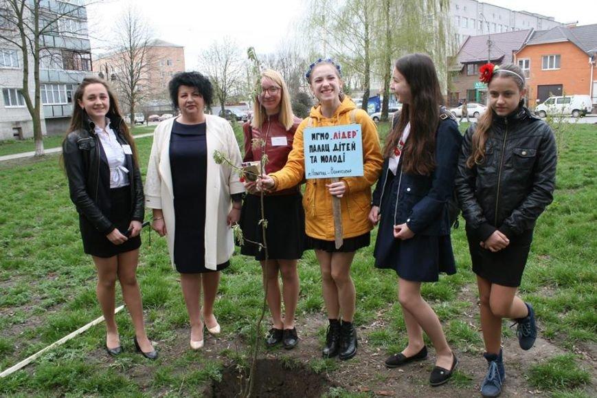 У Новограді-Волинському відбувся молодіжний квест «Мова єднання», фото-3