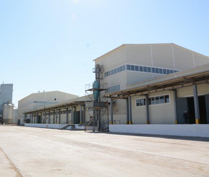 5-Зерновой терминал