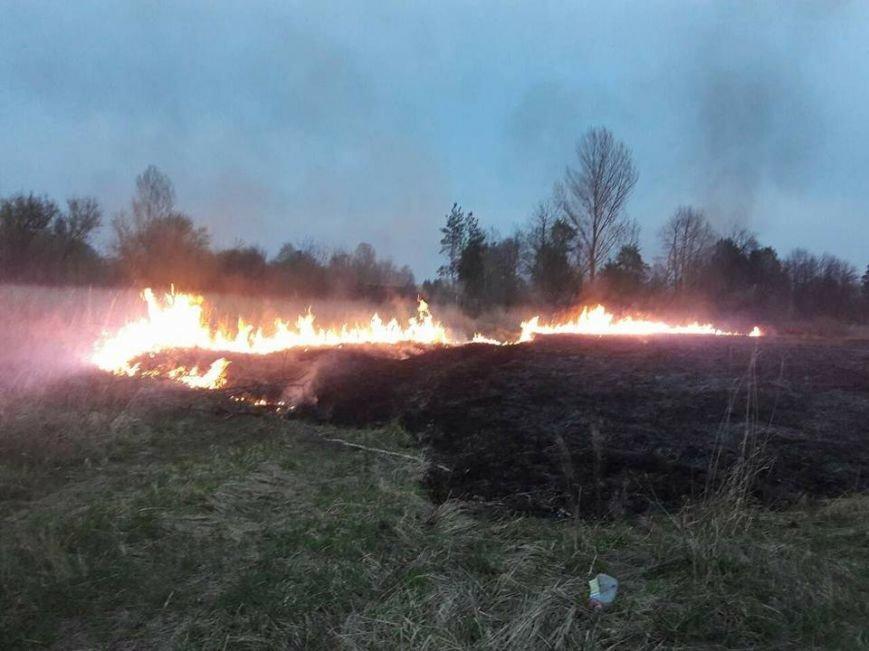 пожежа поле