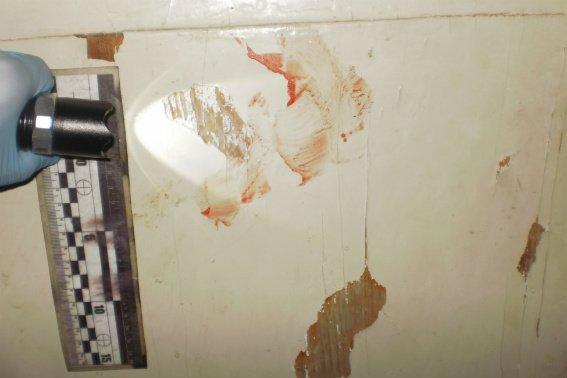 Поліція оприлюднила фотографії з місця жорстокого вбивства в Ужгороді, фото-2