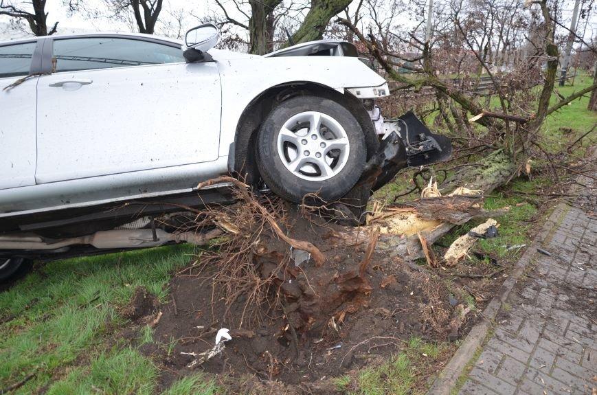 """В Мариуполе автомобиль """"Джили"""" снес дерево (ФОТО+ВИДЕО), фото-6"""