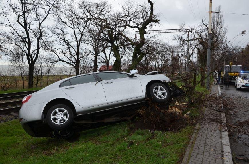 """В Мариуполе автомобиль """"Джили"""" снес дерево (ФОТО+ВИДЕО), фото-1"""