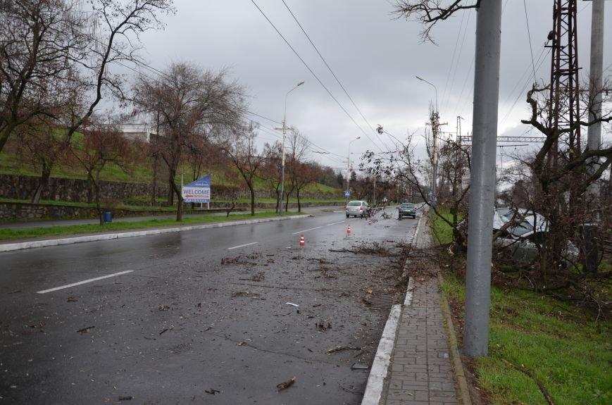 """В Мариуполе автомобиль """"Джили"""" снес дерево (ФОТО+ВИДЕО), фото-10"""