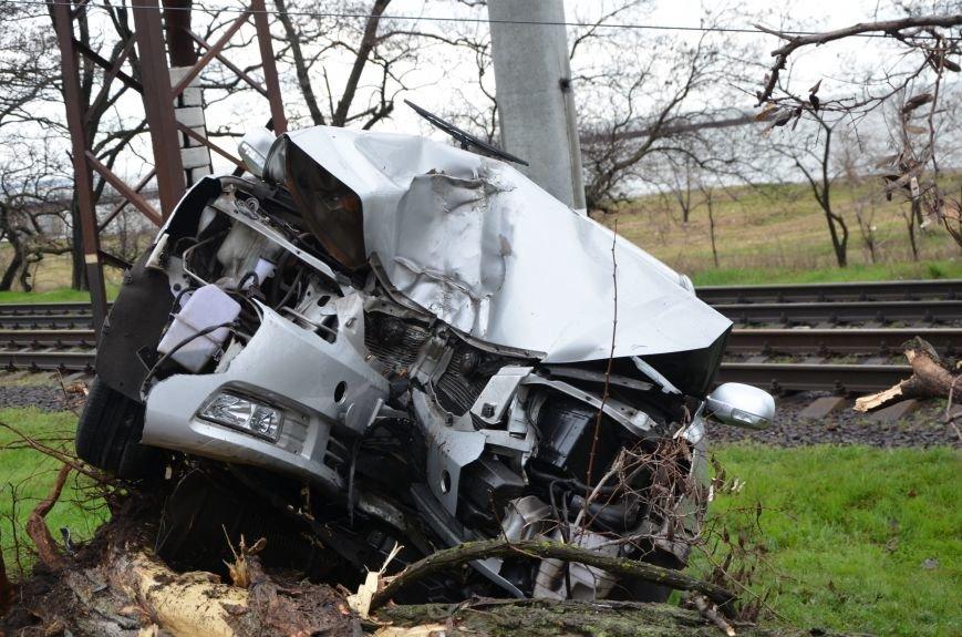 """В Мариуполе автомобиль """"Джили"""" снес дерево (ФОТО+ВИДЕО), фото-4"""