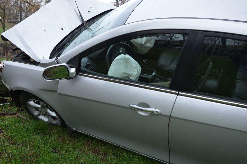 """В Мариуполе автомобиль """"Джили"""" снес дерево (ФОТО+ВИДЕО), фото-8"""