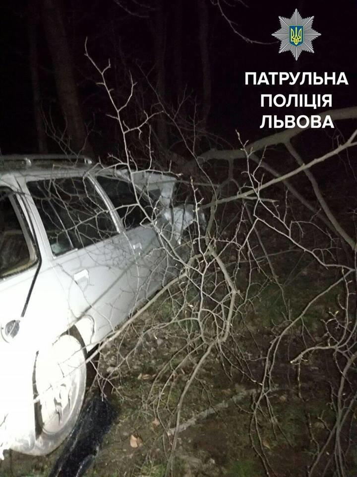 Поблизу Львова автомобіль злетів у кювет: фото з місця ДТП, фото-2